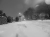 The Beast from the East has Stop the West (RS400) Tags: black white road close beast from east uk snow wow cool wicked travel cold wall traffic light tree trees