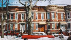 __R_E_D__ (Juni Safont) Tags: winter rowhomes architecture cypresshills eastnewyork brooklyn nyc newyorkcity red cars