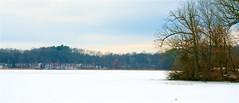 Wildwing Lake (MI) (Herculeus.) Tags: 2018 clouds day ice jan kensingtonmetroparkmi lake landscape landscapes mi milford outdoor outdoors outside parks snow water wildwinglakemi wildwingtrail winter michigan usa 5photosaday