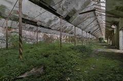 I giardini dell'Eden