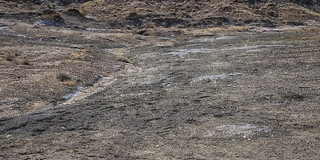 Selenite Flats Big Bend National Park