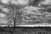 die kalte Jahreszeit (waltsphoto) Tags: kontrast wolkenlandschaft wolkenkontrast winter feld