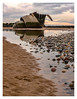 Mary's Shell Reflection (stephenballam) Tags: shell pebbles reflection sculpture clouds
