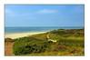 Der westlichste Punkt Dänemarks (günter mengedoth) Tags: nordsee atlantik sand blumen rosen zaun hd pentaxda 1685mm blavand