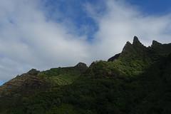 along the Kalalau Trail (Sean Munson) Tags: kalalautrail hawaii napalicoast kauai hiking landscape