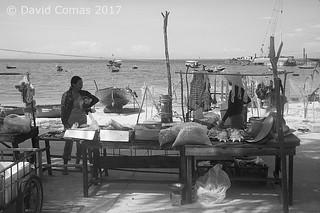 Cham Islands - Bai Huong