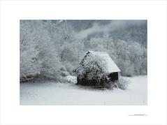 El invierno que no cesa (E. Pardo) Tags: invierno winter nieve schnee snow gesäuse steiermark austria