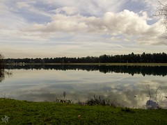 Riflessi d'inverno. Idroscalo (diegoavanzi) Tags: idroscalo seaplane base lago lake acqua water riflessi reflections nuvole clouds sony hx300 bridge milano milan italia italy lombardia lombardy