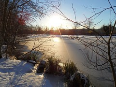 Happiness is... a walk on a sunny winter day! Explore 13.01.2018 (Christa_P) Tags: winter snow sun sonne ice nature outdoor mülheimanderruhr smileonsaturday happinessis 7dwf landscape landschaft