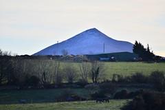 DSC_7318 (seustace2003) Tags: baile átha cliath ireland irlanda ierland irlande dublino dublin éire glencullen gleann cuilinn