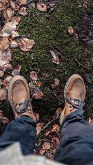 Tolkien Steps (danfaiz) Tags: tolkien lotr hikes landscape nature leaves leaf autumn autumncolour autumnvibes shoes boots photography fujifilm lauterbrunnen walk grass