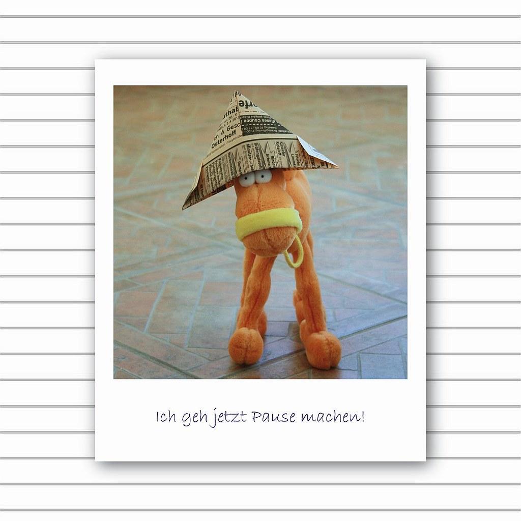 The World S Newest Photos Of Streichen And Umzug Flickr Hive Mind