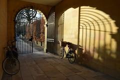 Old Court Sunset (davidvines1) Tags: sunset gate bicycle shadow cambridge entrance arch portal stone college university