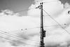 city (Júlia Filogonio) Tags: city town wires birds pb pretobranco bw black white blackwhite conection echo lines cidade fios poste