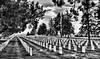 Aug 10 2016 - Little Bighorn National Cemetery (La_Z_Photog) Tags: 081116us212tocrowagencybeartooth lazy photog elliott photography montana motorcycle riding crow agency alzada battle little big horn