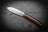 1C5A9756 (bakelite1) Tags: laurent gaillard lg couteaux suminagashi paloalto cran forcé
