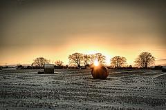 Winter Sunset (BigCam2013) Tags: wintersunset bigcam2013 ecosse edimbourg edimburgo edinbourg edinburgh edynbourg edynburg escocia écosse édimbourg flicht flukra greenbelt harlawreservoir hills hilltop ice landscape landscapebeauty landscapes niceview nikond5200 pentland pentlandhills pentlands scenery scenic schotland schottland scotia scotland scottish scottishlandscapes scozia snaw snow snowfall snowflakes szkocja thisisedinburgh visitscotland walk walks winter εδιμβούργο эдинбург 에든버러 schnee outside january countryside walking landschaft onding winterscene winterwonderland pentlandhillsregionalpark photowalk gentlejaunts naturephotography natur