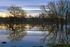Sileby Church over flood meadows (robmcrorie) Tags: st marks church silly flood river soar reflections little egret tree nikon d7500