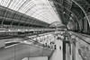 TOM_3668.jpg (Tom Williamson1) Tags: pancrias pancras london station black white longexposure long exposure