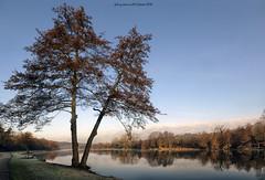 Adda river landscape (fabrizio daminelli ) Tags: adda river fiume alberi trees natura nature lombardy lombardia italia italy parcoaddanord canon sigma fabriziodaminelli
