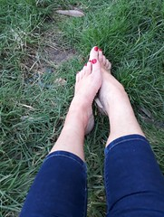 Bare feet on the grass (newport50) Tags: sexybarefeet sexyfeet sexy feet hotfeet ankles rednails red grass arched pretty foot erotic