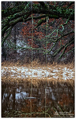 The swing is closed (Cory_ACP) Tags: wisconsin water reflection pond swing flood corychristensen aldercreekphotography
