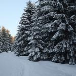 Harz-Oderbrueck_e-m10_1012074155 thumbnail