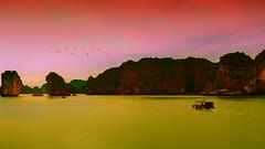 DSC_2771 copie (TThiep30) Tags: vietnam baie d along d750 nikon 1635