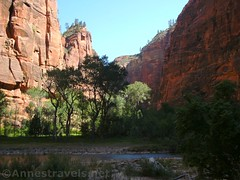 Hiking the Trail to the Zion Narrows (Annes Travels) Tags: zionnationalpark utah zionnarrows canyon virginriver desert