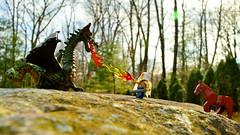Fight fire with fire (057/365) (robjvale) Tags: nikon d3200 adventurerjoe project365 lego skyrim mage fire dragon horse duel magic trees rock