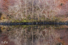 Mirror of Scotland (Renate van den Boom) Tags: 02febuari 2018 boom europa glencoe grootbrittannië jaar landschap maand meer natuur renatevandenboom schotland seizoenen winter