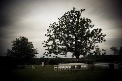 Randor Hunt Weddings (jscottcatering) Tags: randor hunt wedding landscape venue ceremony setup