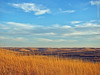Konza Prairie, 10 Feb 2017 (photography.by.ROEVER) Tags: kansas rileycounty prairie tallgrassprairie konzaprairie nature naturetrail flinthills bluesky blueskies grasslands landscape afternoon february 2017 february2017 usa