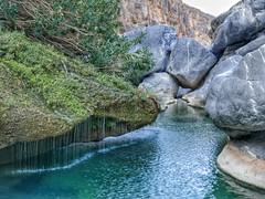 Rock pool in Wadi Damn.