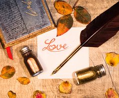 Classic Love (Theo Crazzolara) Tags: love liebe heart herz written writing pen feather ink book romantic romance ancient art stilllife calligraphy kalligrafie heartsickness lovesickness beautiful letter classic gold