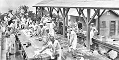 wash day at detention barracks, Naval Training Station San Francisco ca1918 NARA165-WW-344A-007 (SSAVE over 10 MILLION views THX) Tags: ww1 worldwari sailors usnavy brig detention punishment prisoners shavedhead