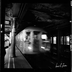 29 (louis.r.zurn) Tags: hasselblad500cm hasselblad 500cm 6x6 120 film 120film newyorkcity zeissdistagon zeiss50mmc zeiss50mmdistagon hp5 ilfordhp5 hp5ei800 ilfordfilm filmphotography streetphotography nycphotography newyorkcityfilmphotography hc110 blackandwhite blackandwhitefilm homedeveloping nycsubway train