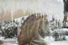 Ghiaccio (Irma Testa) Tags: cavallo ghiaccio rimini bianco neve nikoncoolpixs7000