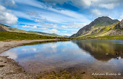 Lake in Snowdonia (Adrian Evans Photography) Tags: grass welshlandscape cwmidwal snowdonia landscape snowdonianationalpark idwal landmark reflections outdoor tryfanmountain llynidwal clouds countryside summer uk cows adrianevans northwales tryfan sky lake snowdonialake wales naturereserve mountain
