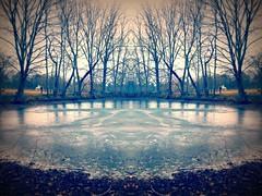 sliding on the Garrison Forest pond (karma (Karen)) Tags: garrisonforest ponds owingsmills maryland picmonkey hss iphone