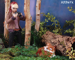 Do What You Love: Photograph (APPark) Tags: dolls fashionroyalty 16scale dioramas sininthecity hobbies miniatures nature fox photography camera makingasceneerin nuface