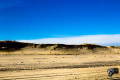 IMG_0008 (Sickbones_photography) Tags: beach ocean seaside nj newjersey blackwhite color sand water dream arcade
