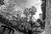 DSCF8347 (Klaas / KJGuch.com) Tags: barcelona trip travel citytrip traveling outandabout vacation xpro2 cataluna