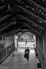 Lone monk traverses covered temple entrance - Mandalay, Myanmar (Phil Marion) Tags: myanmar burmese mon asian oriental buddhist philmarion candid woman girl boy teen 裸 schlampe 나체상 벌거 desnudo chubby nackt nu ヌード nudo khỏa 性感的 malibog セクシー 婚禮 hijab nijab burqa telanjang nude slim plump tranny sex slut nipples ass xxx boobs tits upskirt naked sexy bondage fuck tattoo fetish erotic lingerie cameltoe feet cock desi hindu japanese african khoathân latina khỏathân beach public swinger outdoor cosplay gay wife dick milf