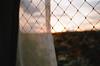 .rise and shine. (Camila Guerreiro) Tags: film expiredfilm kodak sunrise maxversatility400 voigtländer camilaguerreiro brazil window expired voigtländervitocl analog grain sky