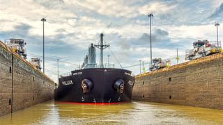 Panama Canal Mules
