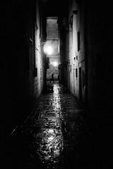 Nocturno (Koprek) Tags: leicam2summaron35mm2 kodaktrix 1600 dubrovnik croatia film rain cold wind december 2017
