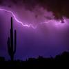 Monsoon Lights (Plotz Photography) Tags: az arizona desert landscape thunderstorm lightning nature outdoors rain weather clouds saguaro cactus