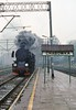 Ty2-911 PKP  |  1992 (keithwilde152) Tags: ty2911 chabowka beskids pkp poland 1992 station platforms tracks town steam locomotives outdoor autumn