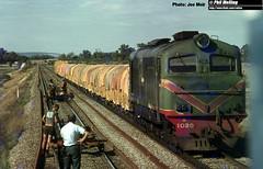 J574 X1030 South Guildford (RailWA) Tags: railwa joemoir philmelling westrail x1030 south guildford